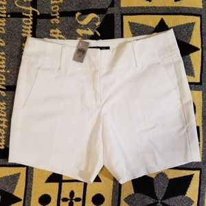 Ann Taylor Petite Women's Shorts